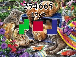 Puzzle полимино №254665