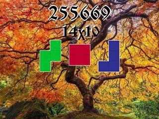 Puzzle полимино №255669