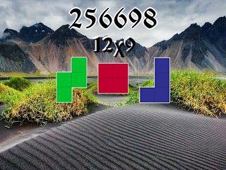Puzzle полимино №256698