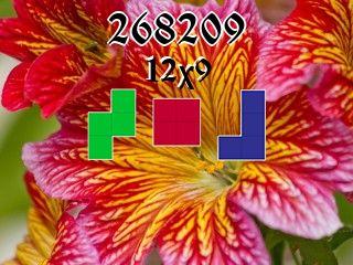 Puzzle полимино №268209