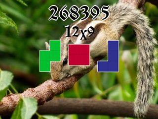 Puzzle полимино №268395