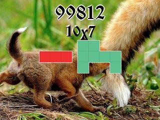 Puzzle полимино №99812