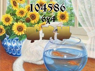 Puzzle №104586