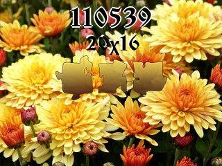 Puzzle №110539