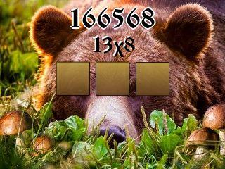 Puzzle №166568