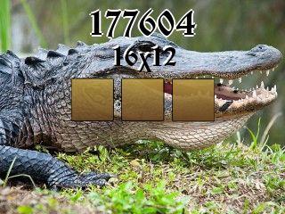 Puzzle №177604