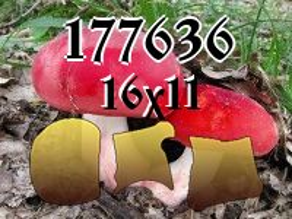 Puzzle №177636