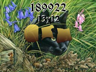 Puzzle №189922