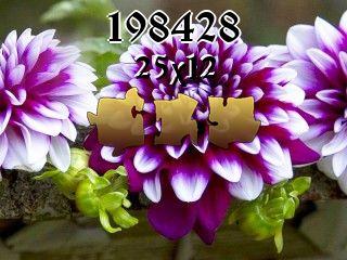 Puzzle №198428