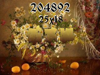 Puzzle №204892
