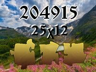 Puzzle №204915