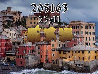 Puzzle №205163