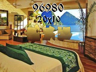 Puzzle №96980