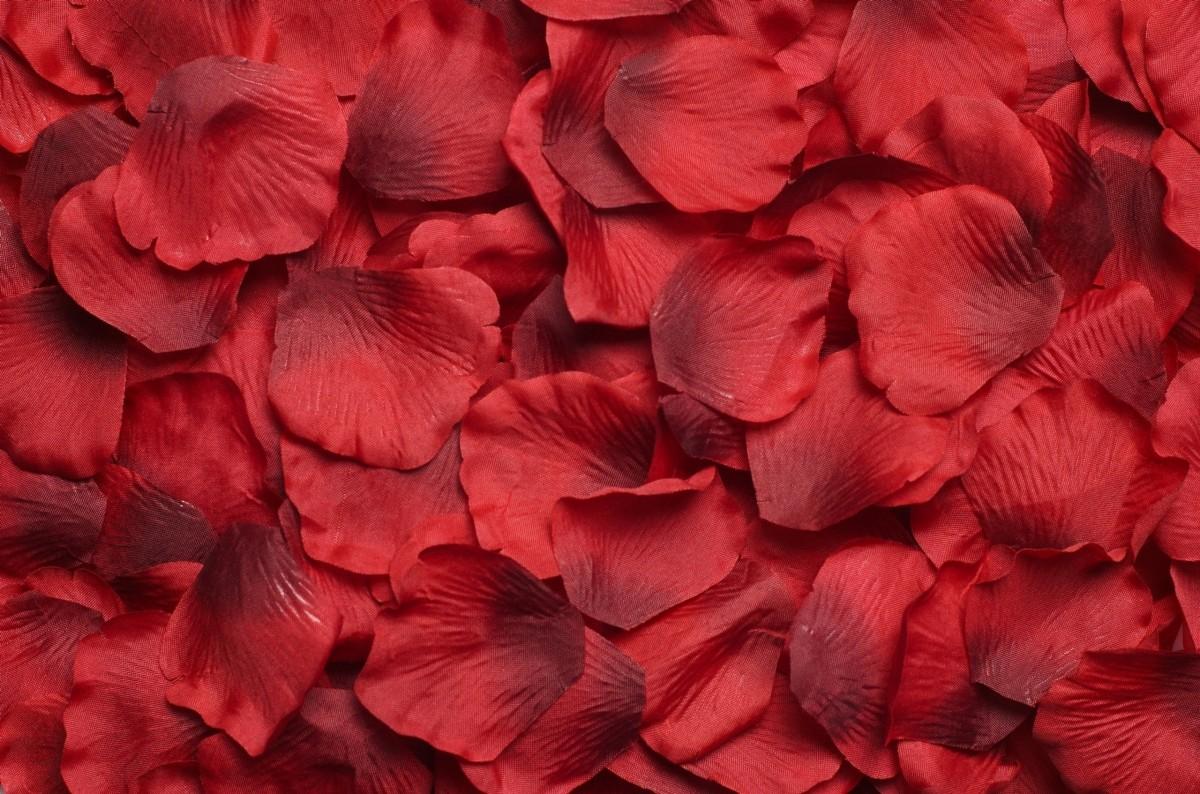 Puzzle Sammeln Puzzle Online - Scarlet petals