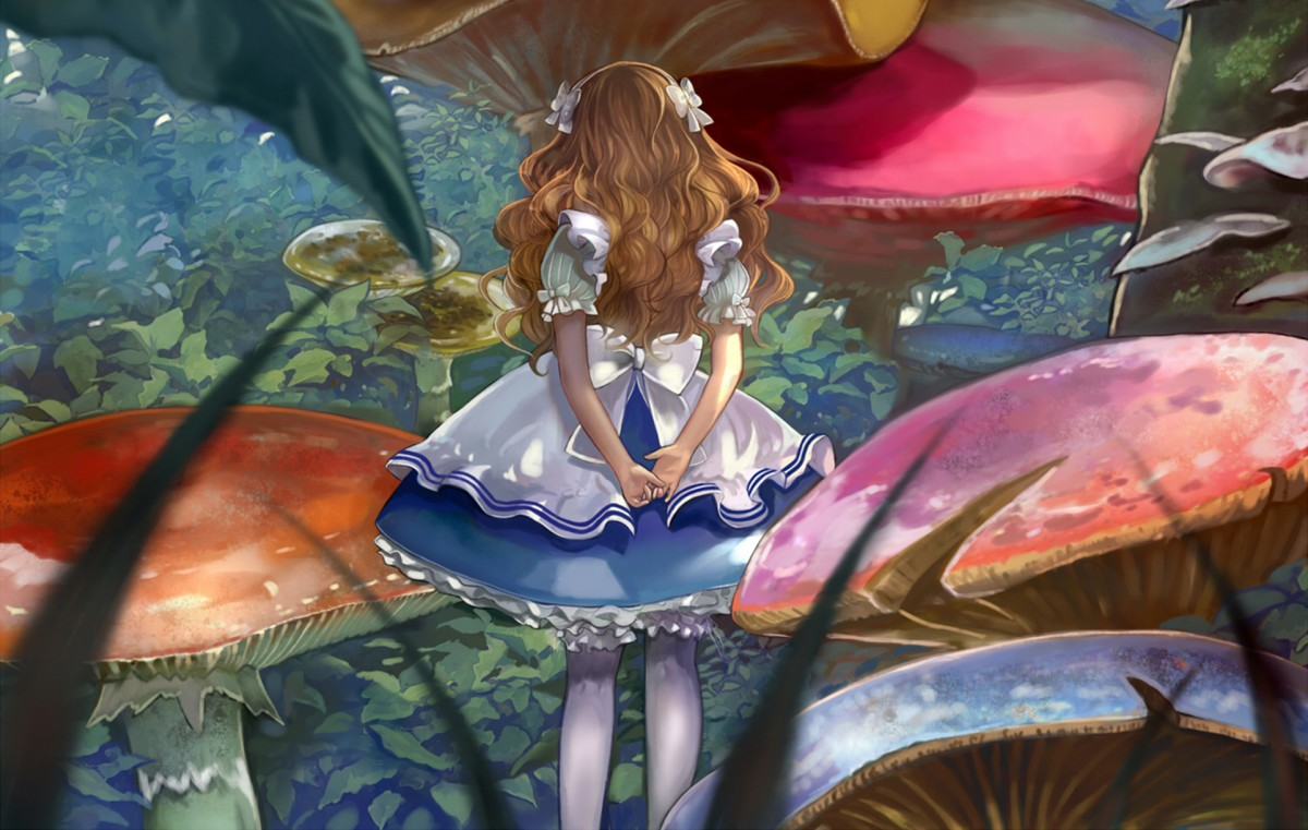 Puzzle Sammeln Puzzle Online - Alice and mushrooms