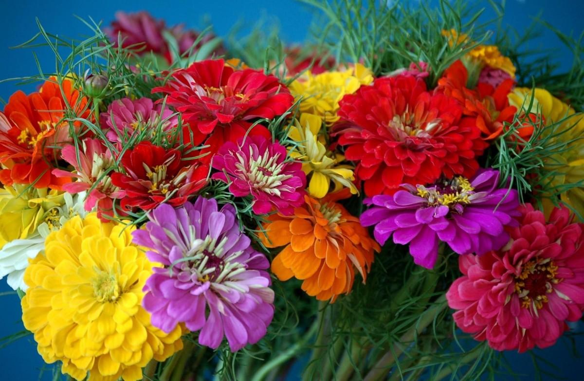 Puzzle Sammeln Puzzle Online - Bouquet of tiny