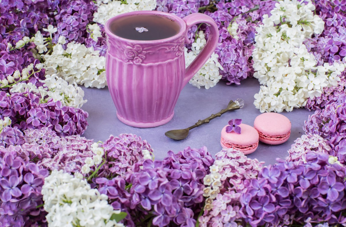 Puzzle Lilac tea