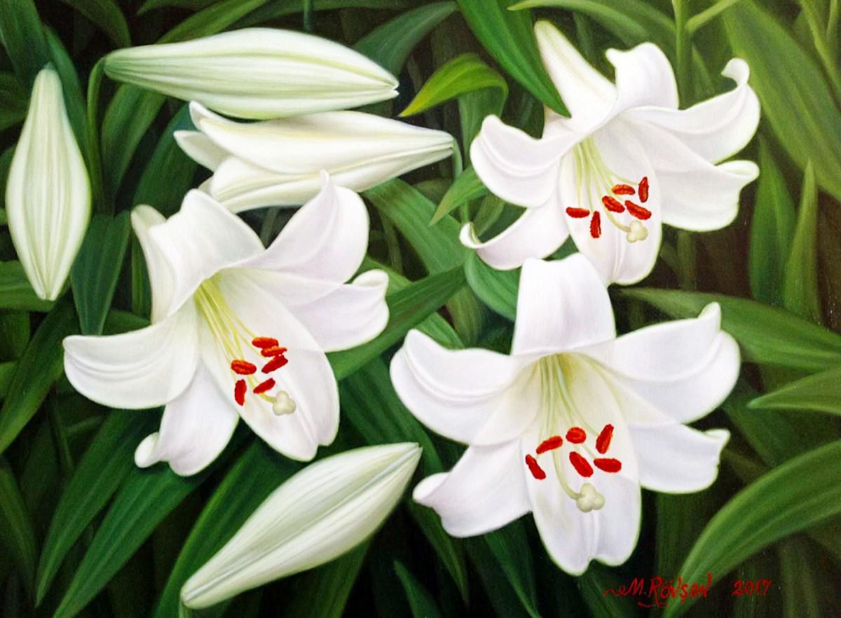 Puzzle Lilies