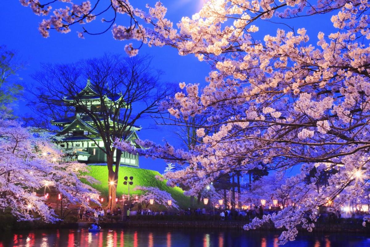 Puzzle Sammeln Puzzle Online - Night Sakura