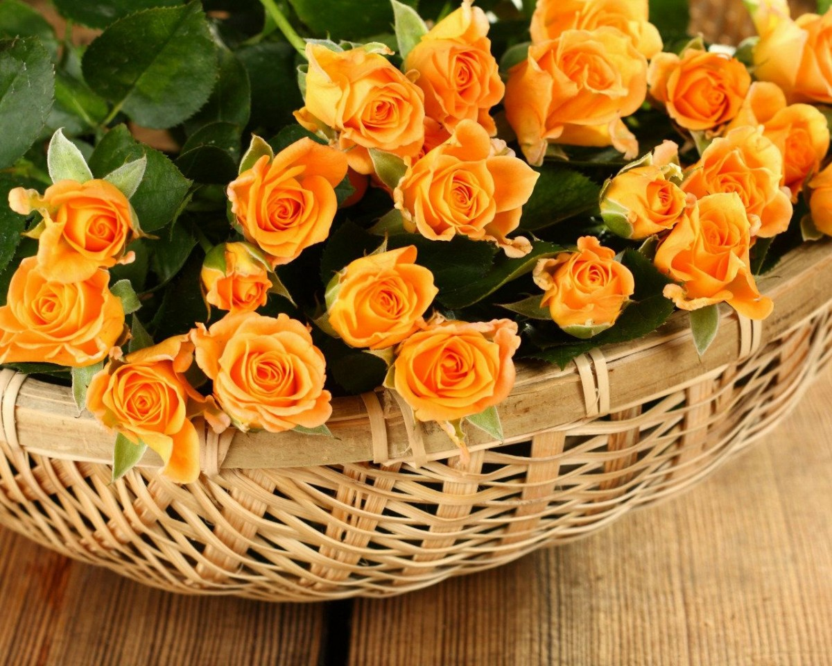 Puzzle Sammeln Puzzle Online - Orange roses