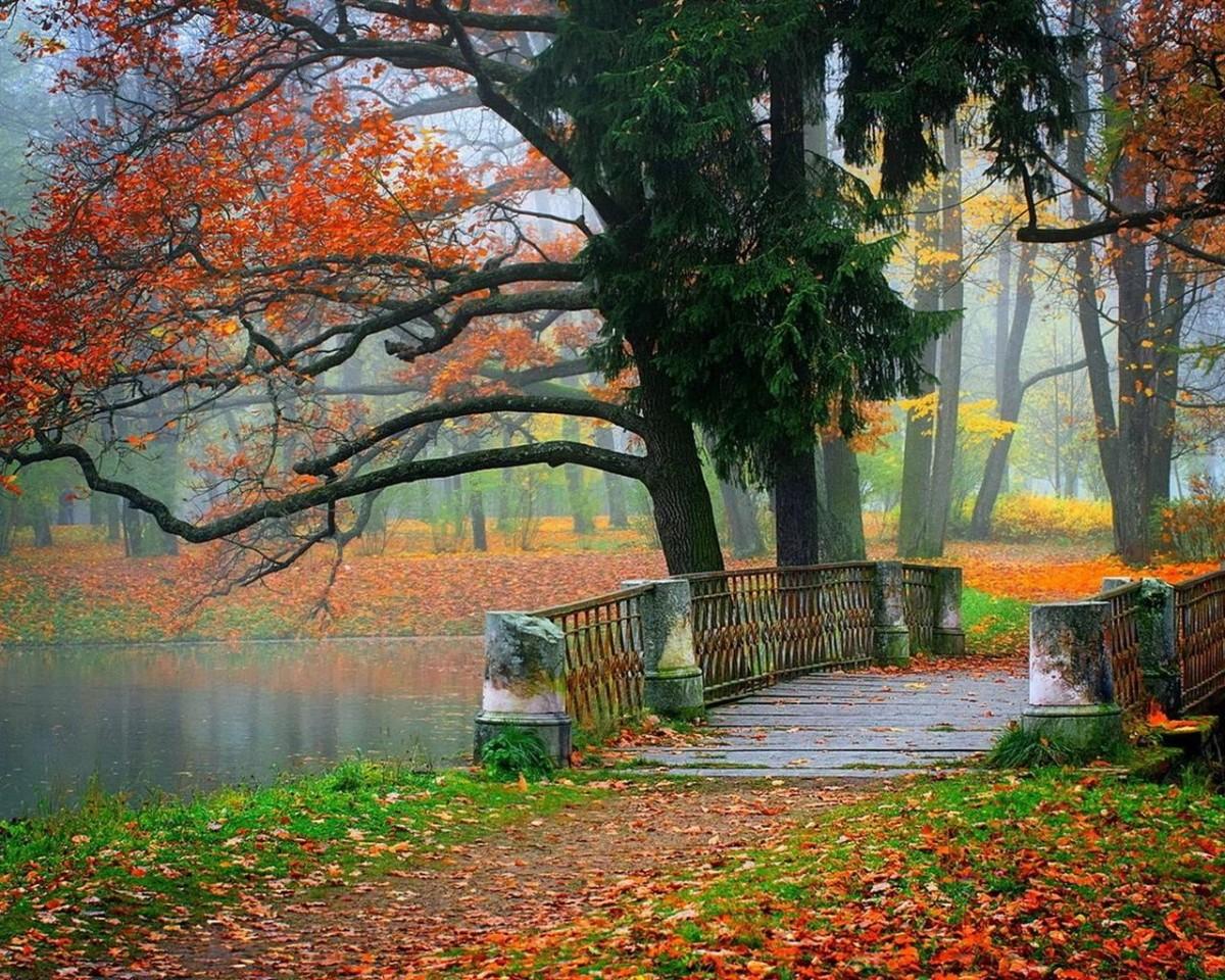 Puzzle Sammeln Puzzle Online - Autumn in the Park