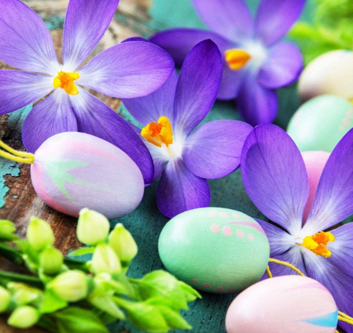 Puzzle Sammeln Puzzle Online - Easter crocuses