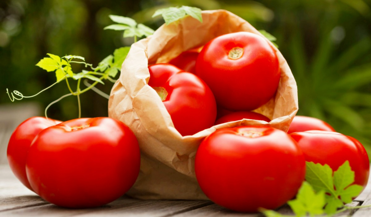 Puzzle Sammeln Puzzle Online - Tomatoes