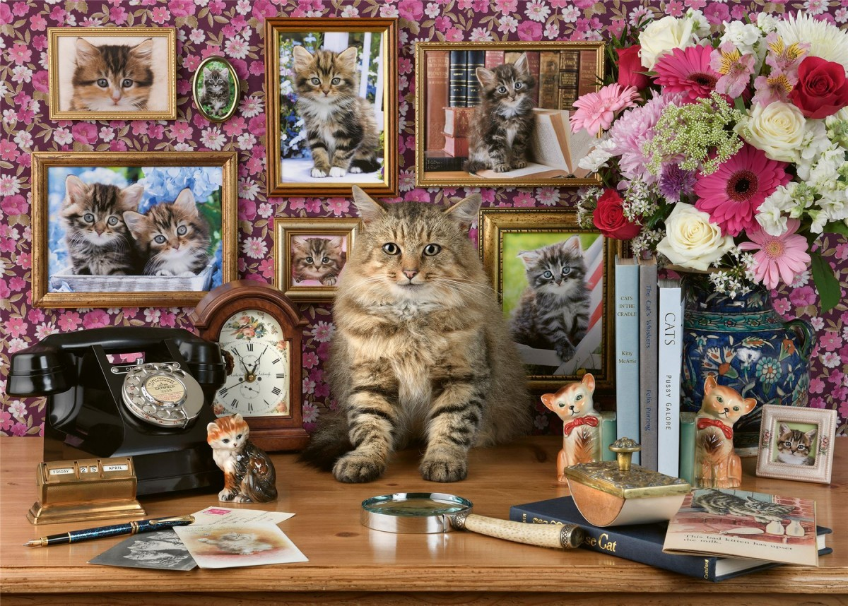 Puzzle Sammeln Puzzle Online - Relatives of the cat