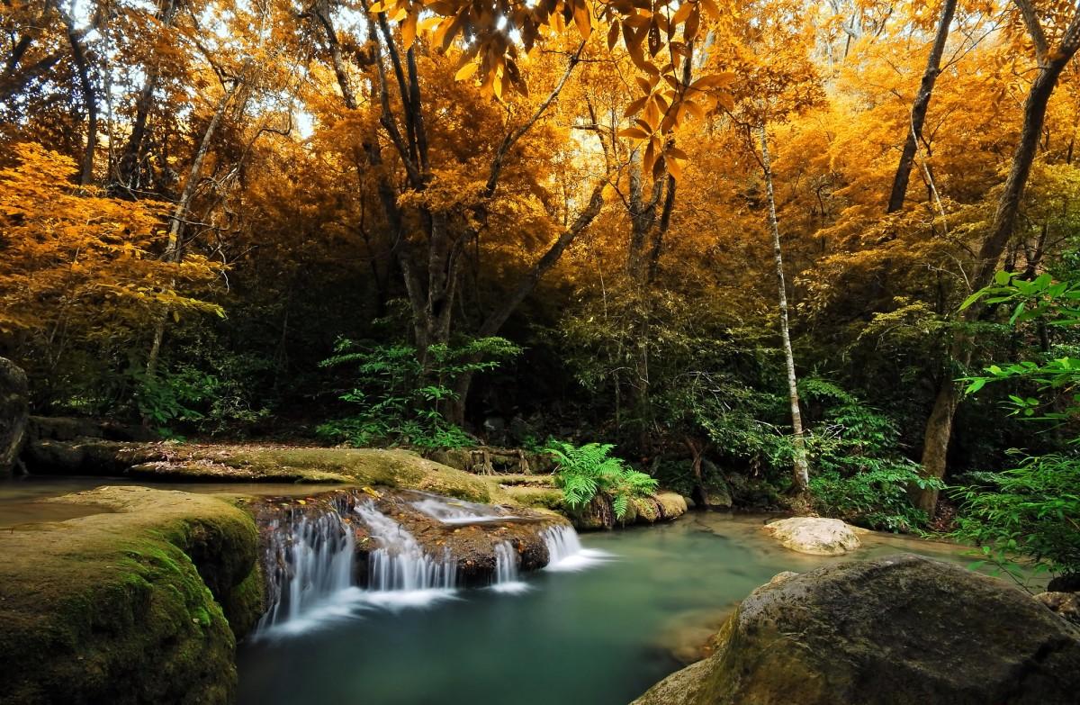 Puzzle Sammeln Puzzle Online - waterfall