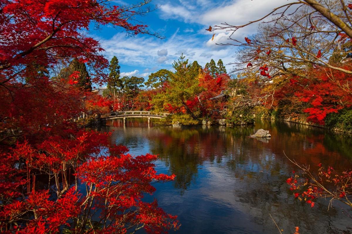 Puzzle Sammeln Puzzle Online - Japanese autumn