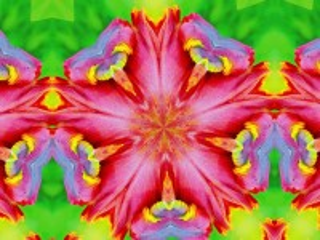 Собирать пазл Abstract hibiscus онлайн