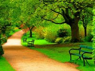 Собирать пазл Alley in the park онлайн
