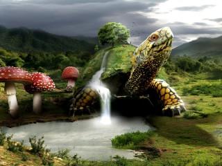 Собирать пазл Tortoise the Earth онлайн