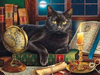 Собирать пазл Black cat онлайн
