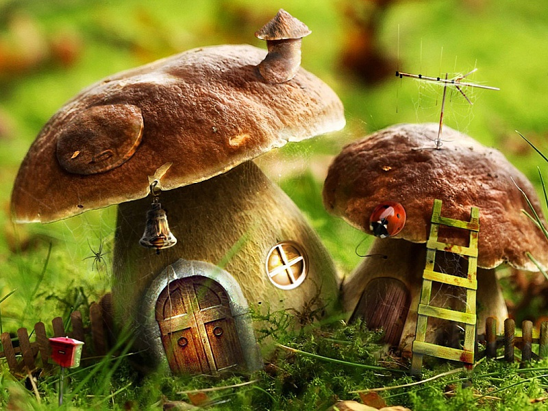 Puzzle Sammeln Puzzle Online - Mushrooms the houses