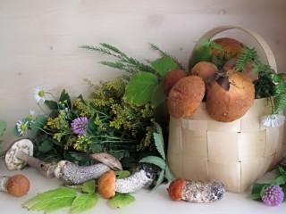 Собирать пазл Mushrooms and herbs онлайн