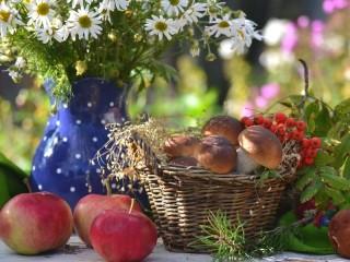 Собирать пазл Mushrooms apples chamomiles онлайн
