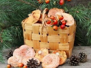 Собирать пазл Mushrooms in the basket онлайн