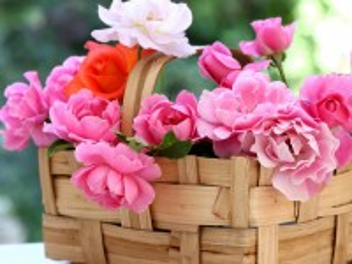 Собирать пазл Basket with roses онлайн