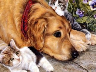 Собирать пазл Kittens and dog онлайн