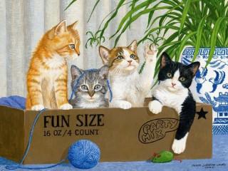 Собирать пазл Kittens in the box онлайн