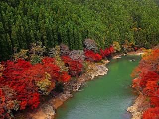 Собирать пазл Beautiful nature онлайн
