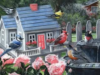 Собирать пазл Krasochnie ptitsi онлайн