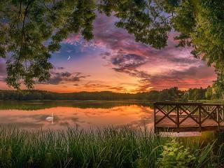 Собирать пазл Swan lake онлайн