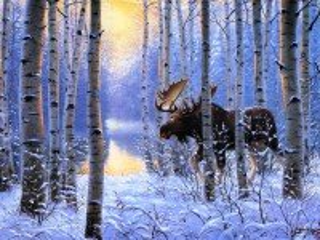 Собирать пазл Moose in winter forest онлайн