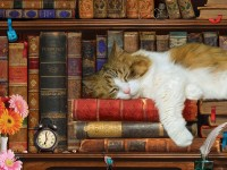 Собирать пазл A lover of books онлайн