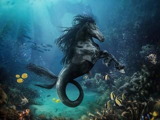 Собирать пазл Sea horse онлайн