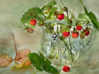 Собирать пазл Wild strawberry онлайн