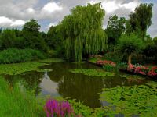 Собирать пазл Netherlands lake CEE онлайн
