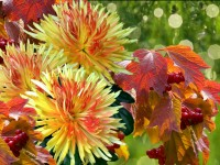 Собирать пазл Autumn bouquet онлайн